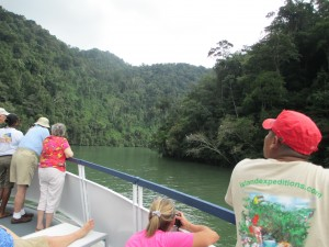 Birding as we Cruise up the Rio Dulce into Guatemala.